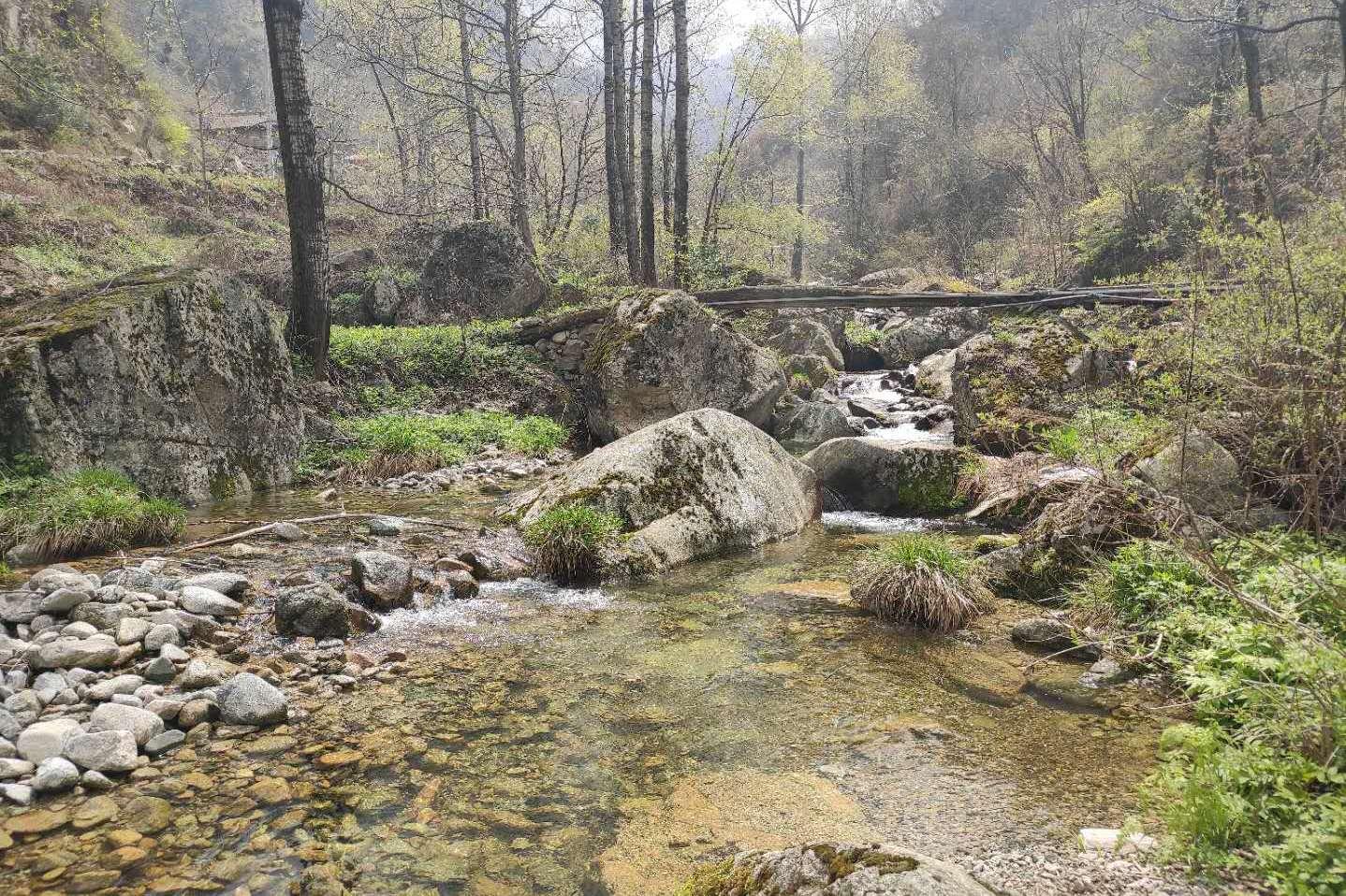 终南山有小桥流水的院子,还有一片自留山和自留地,在此隐居可好
