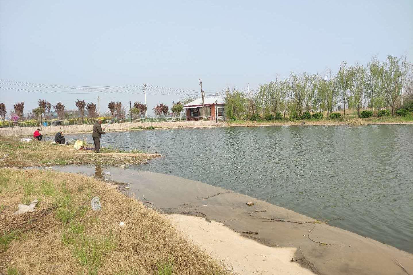 在家乡陕西咸阳,发现村子里一处有花有水的地方,租下来隐居可好