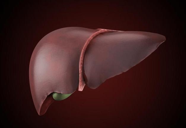 肝炎的早期症状有哪些?如何有效的阻断肝炎迁延发展