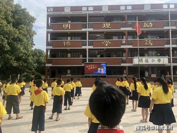 衡阳石鼓区同兴路小学:加强禁毒宣传教育铸造绿色健康人生