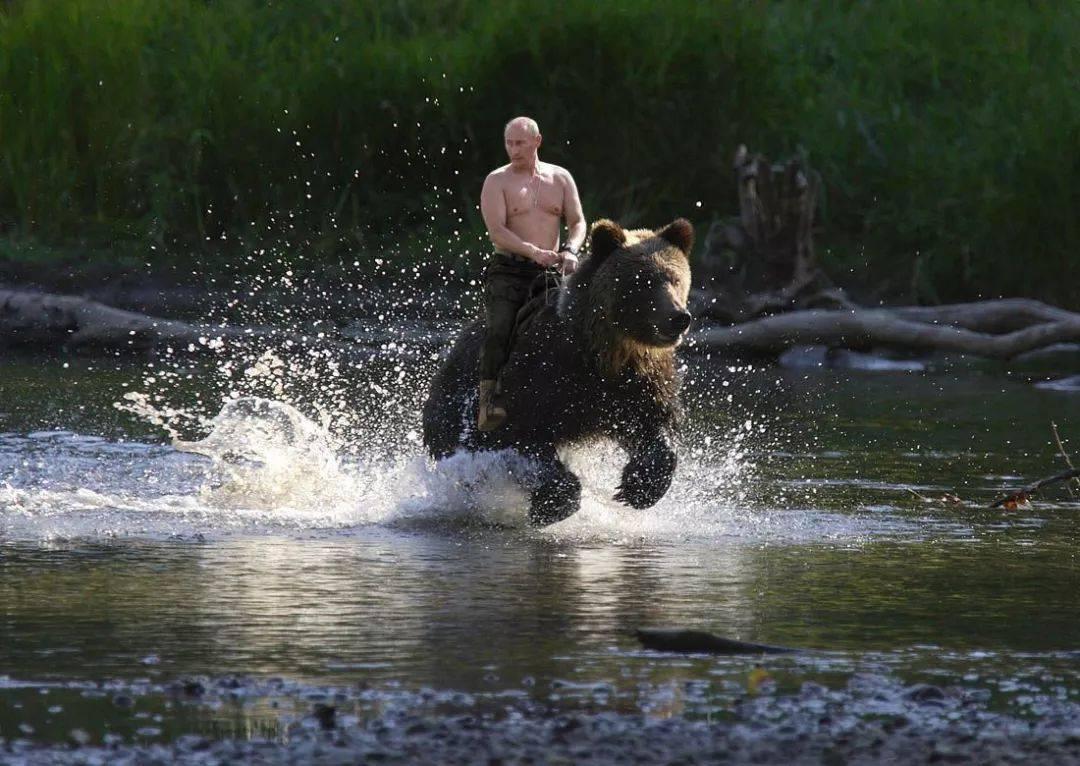 """俄议长透露一个秘密,俄总统未来继承人出炉,别无他人还是""""普京"""""""