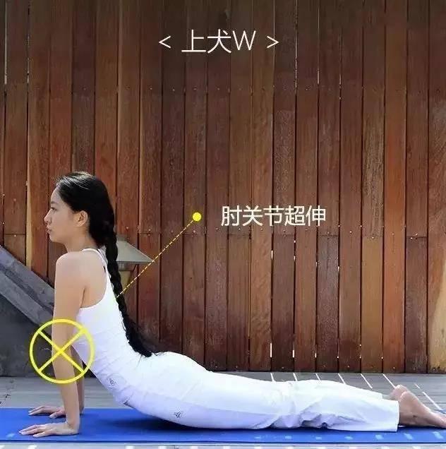 为什么练瑜伽那么久没效果?抓住要点,避免错误体式才能事半功倍_身体 知识百科 第9张