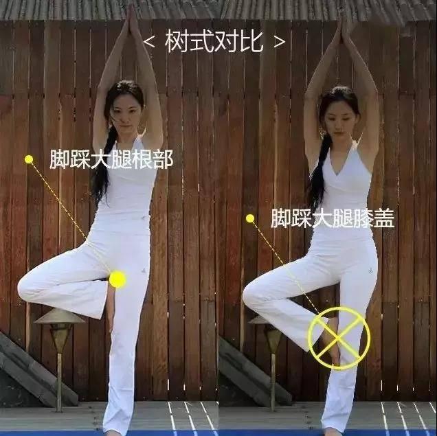 为什么练瑜伽那么久没效果?抓住要点,避免错误体式才能事半功倍_身体 知识百科 第8张