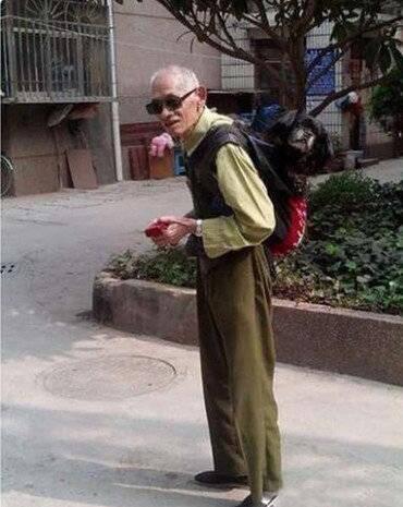 原创 狗狗陪了主人一生,现在年迈走不动路,主人的做法感哭众多看者