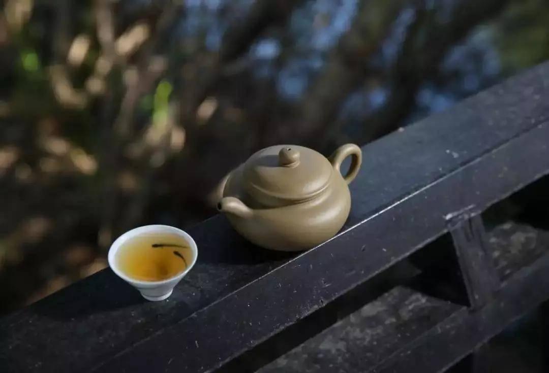 不喝茶的人,看完都想喝茶了 增肌食谱 第1张