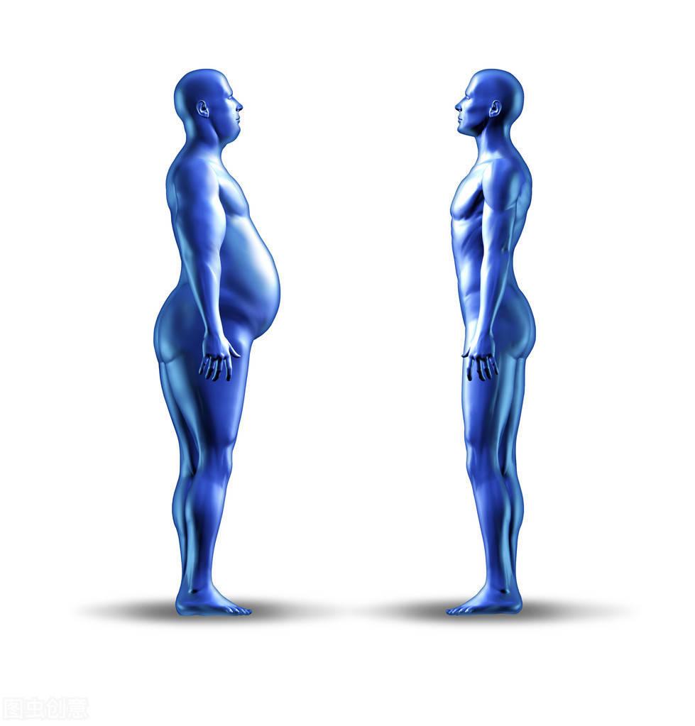 减肥的关键词:体脂率!怎么提高身体代谢水平,促进身体燃脂?