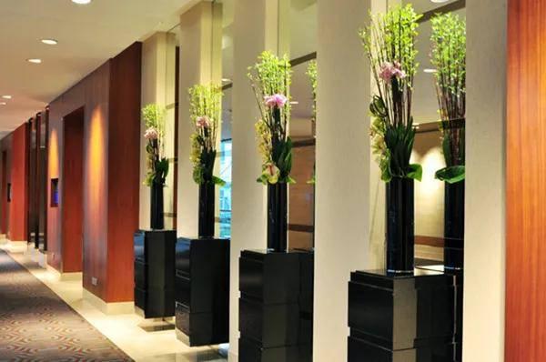 酒店室内绿化设计的四大功能
