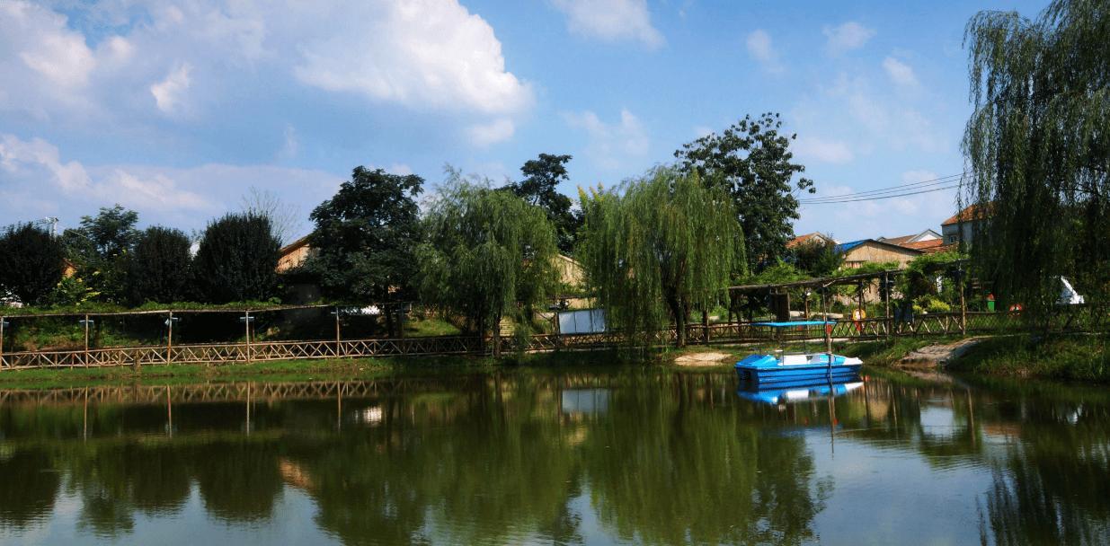 图为|河南虞城:多彩乡村