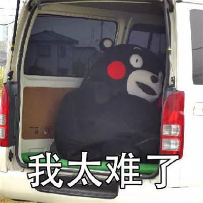 熊本熊我太难了表情包