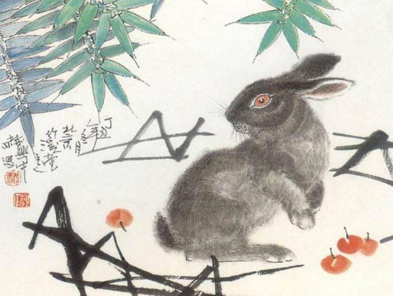 兔子:哪一年最吉祥?