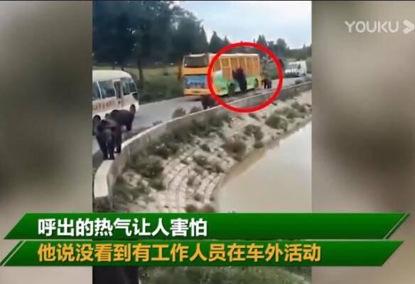 游客讲述上海野生动物园游览经历 现场事发突然 触目惊心!