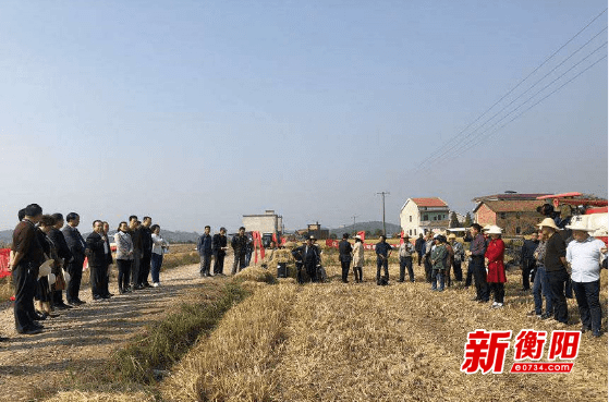衡阳市组织召开秸秆综合利用机械化作业现场演示会