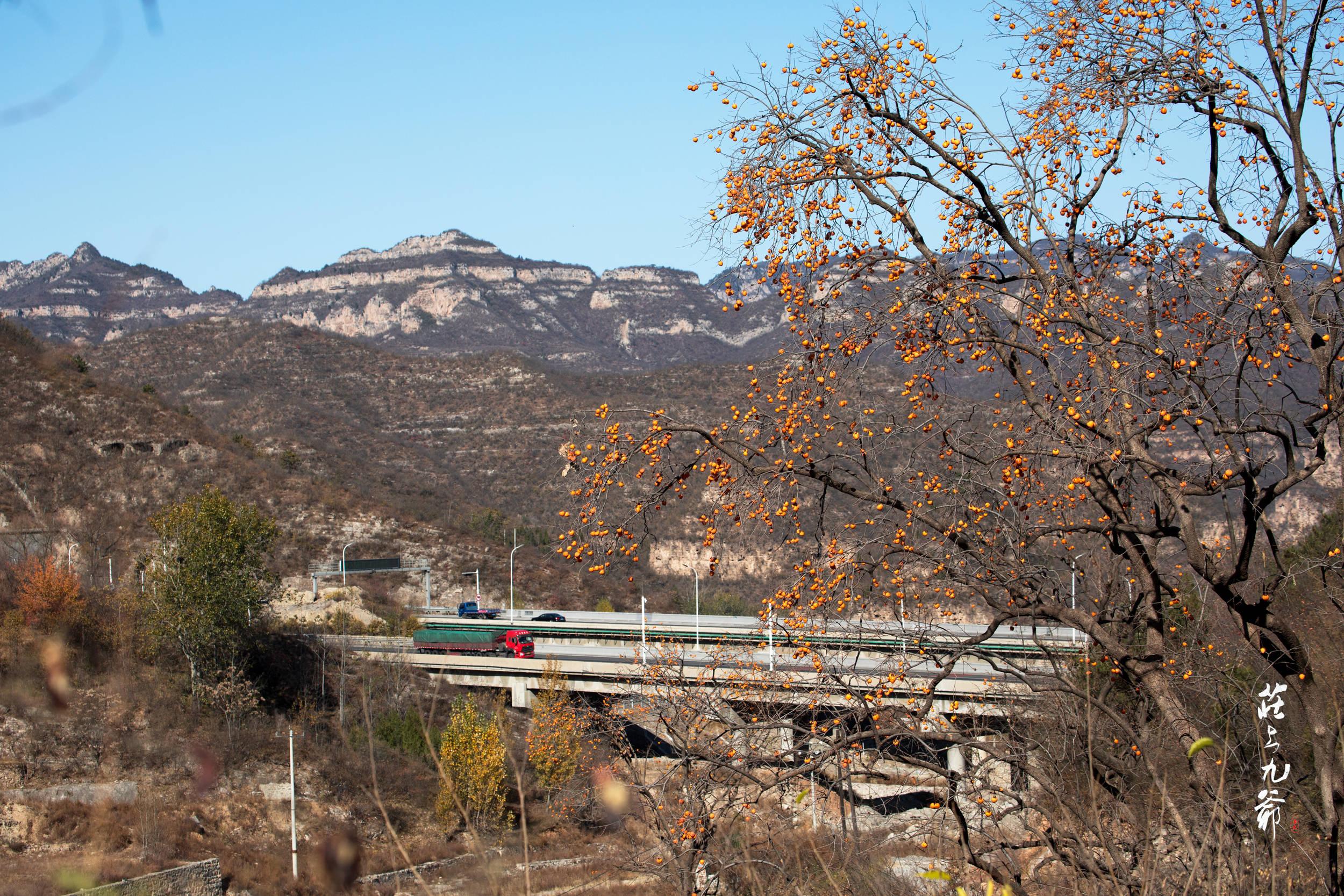 太行山区老乡的一句方言 让我误入山坳小村:达柯