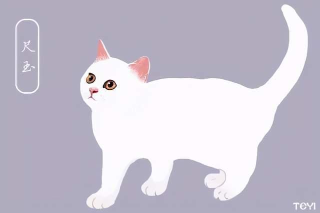 中华田园猫的品种有哪些图片