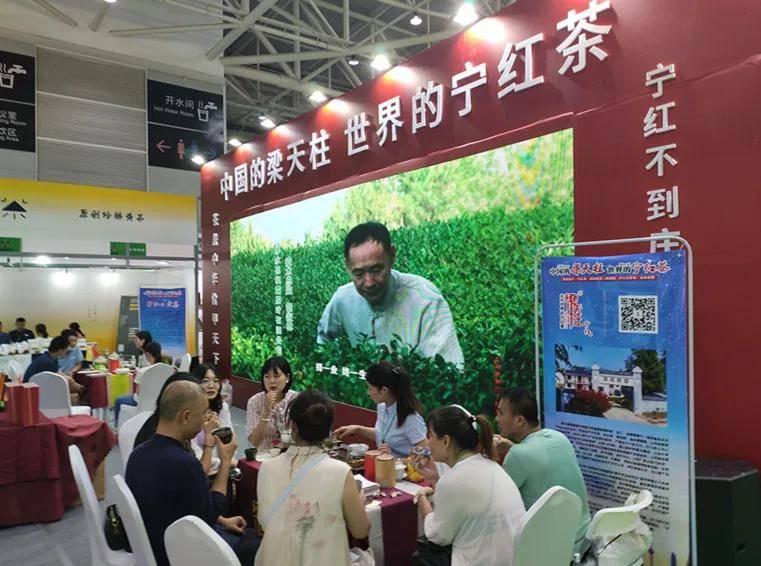 2021第4届青岛·北方春季茶产业博览会6月4日隆重开幕!-日照绿茶网
