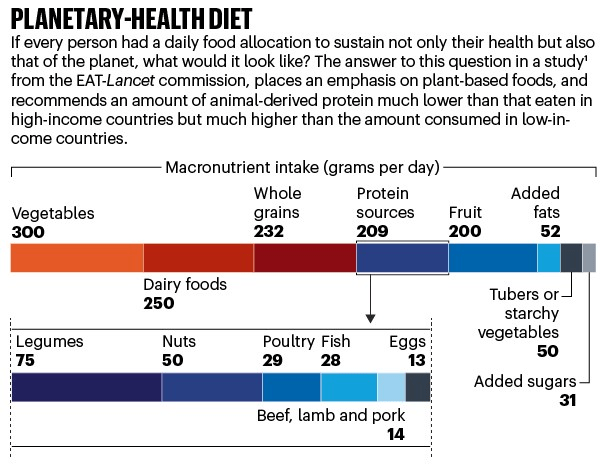 Nature Outlook:Eat