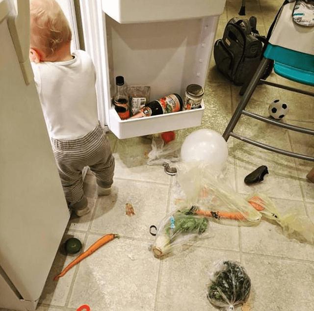 撒贝宁吐槽妻子散养式育儿:舔地板啃拖鞋,她却无动于衷