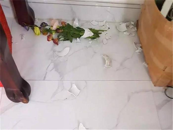 主人心爱的花瓶被猫砸了,生气下将众猫挂起,真能让它们后悔?