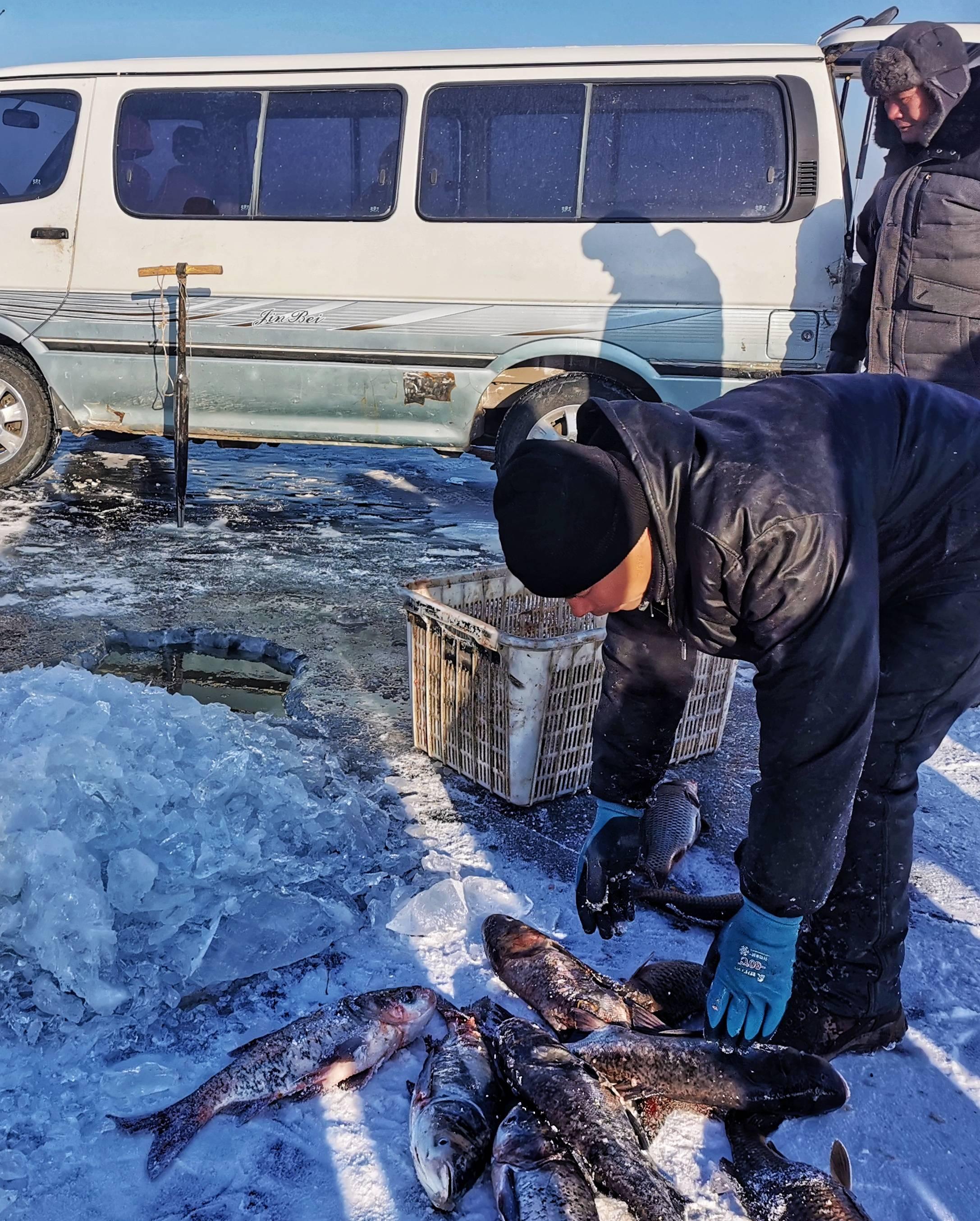 大庆杜尔伯特蒙古族自治县,爱鱼竟然胜羊肉,人人能做全鱼宴