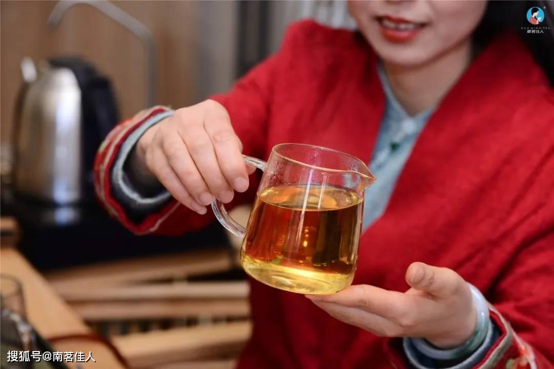 6年陈《昔归》古树春茶滋味如何?品鉴会告诉你!