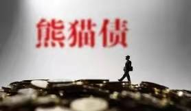 发行熊猫债券的新规定进一步促进了中国债券市场的开放