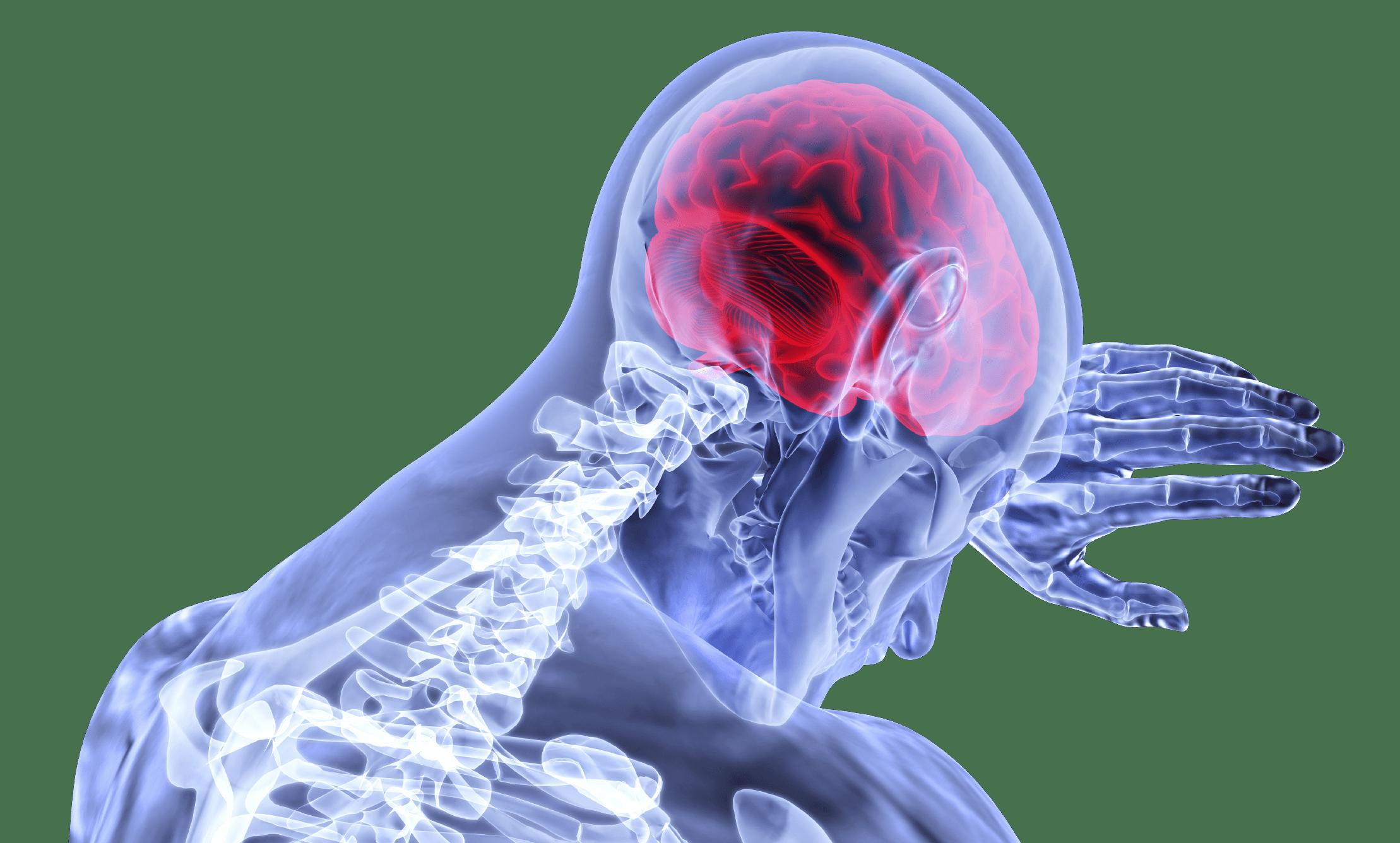慧恩达健联动中国科学院,研发推出奇酶SOD守护神经中枢