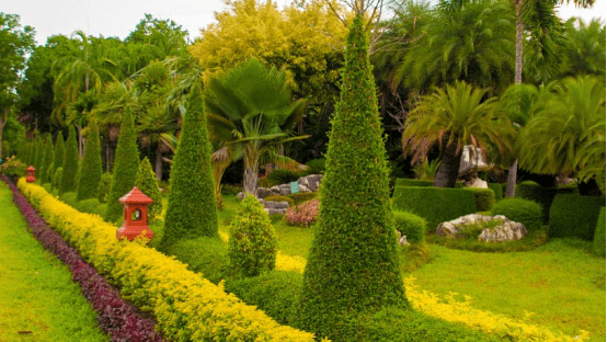 仿真植物绿雕_沈阳仿真绿植树_又一片绿草地打一植物