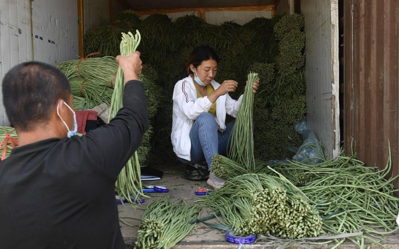 北京在进入新开发区之前,为了推广清洁