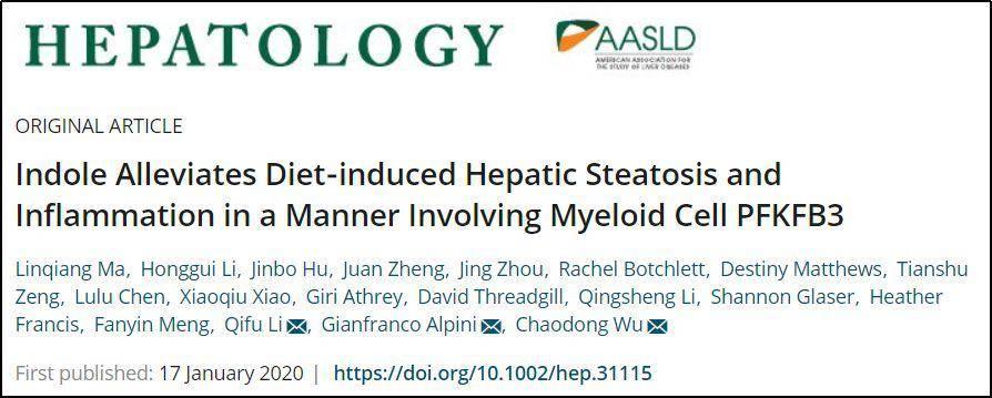 重医附一院内分泌内科李启富教授团队研究揭示吲哚缓解非酒精性脂肪肝病的作用机制