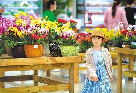 <strong>兰州新区的花卉交易中心吸引市民参观选购</strong>