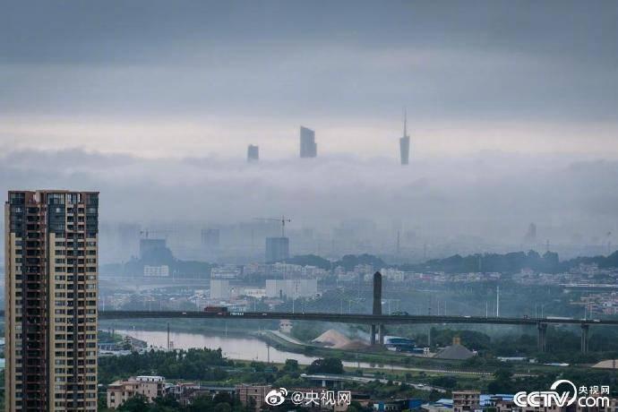"""广州出现云墙 """"小蛮腰""""穿越云层恍若仙境"""