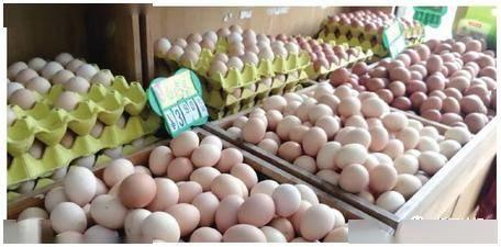 蛋类排行_京东联合蛋类头部品牌德青源首发低醇鸡蛋推动农产品产销正循环