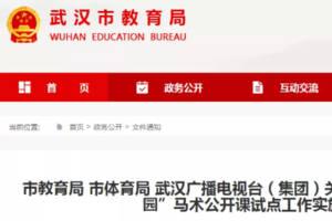 武漢22所小學9月將開設馬術公開課試點工作