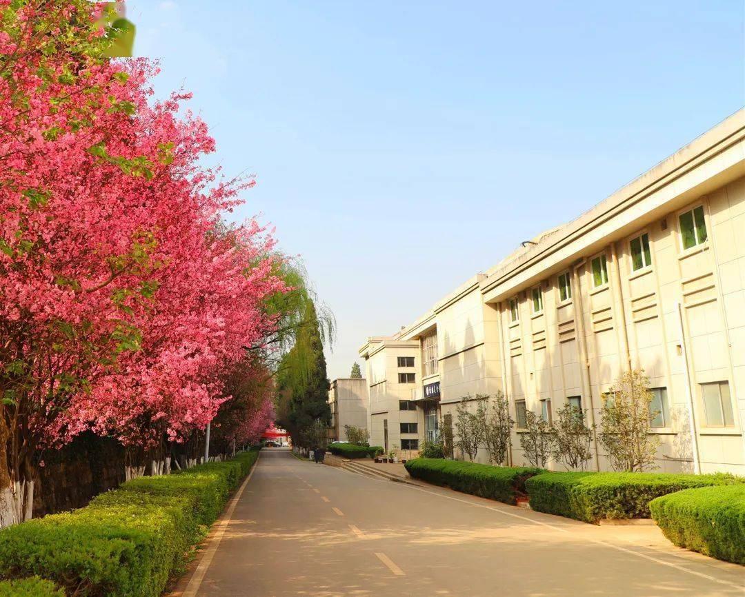 甘肃冶金职业技术学院