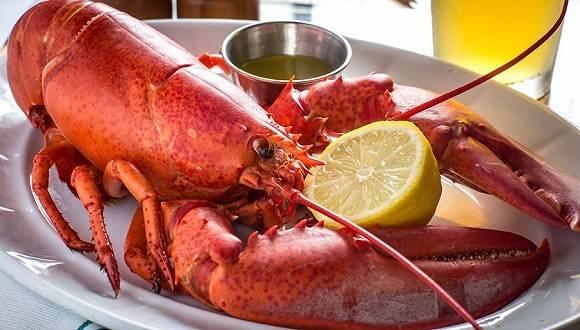 波士顿龙虾卖不出去,特朗普又打起了关税的主意