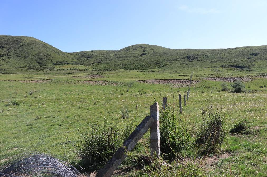 地球的一半 青藏高原上的网围栏错了吗?