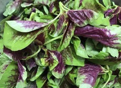 5种必须焯水后再吃的蔬菜,今天才知道原因,看后赶快告诉家人! 增肌食谱 第2张