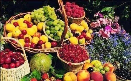 """果蔬是病毒的""""克星"""",常吃水果蔬菜增强身体抗病能力 增肌食谱 第2张"""