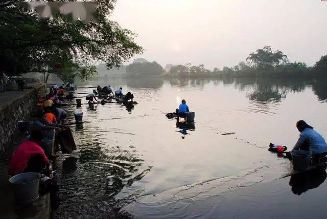 7月4.5当天的发游价格仅为78元。吴旋八仙天池、灵湖摄影是纯一日游。