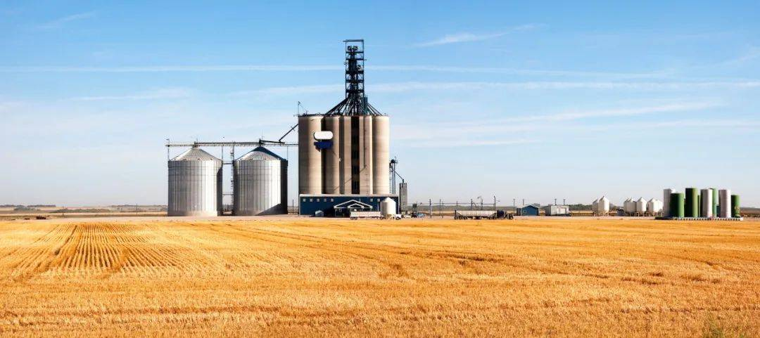 国家粮库储存玉米变筛糠?中储粮已展开调查,曾因大火烧粮损失上亿