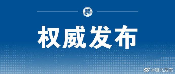 《湖北发行新增政府债券突破千亿》