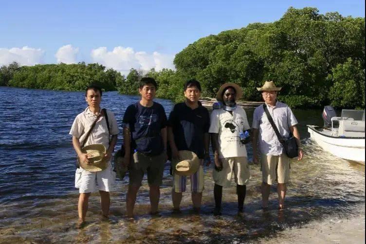 从肯尼亚沿海出土中国瓷器看古代海上贸易兴衰变迁
