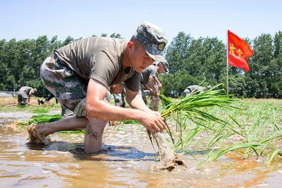 当洪水退去时,为什么士兵们不立即撤离