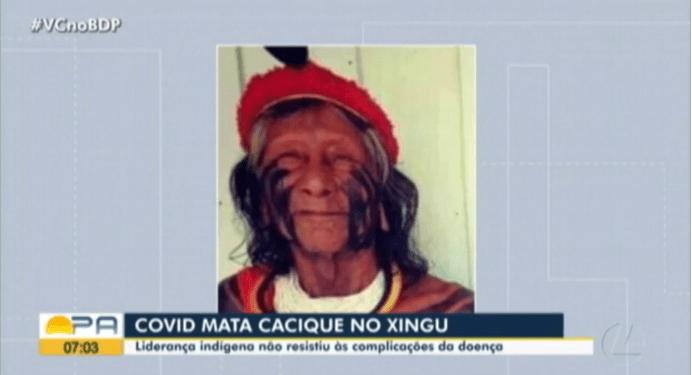 巴西确诊病例累计超395万,又一原住民部落首领因新冠去世