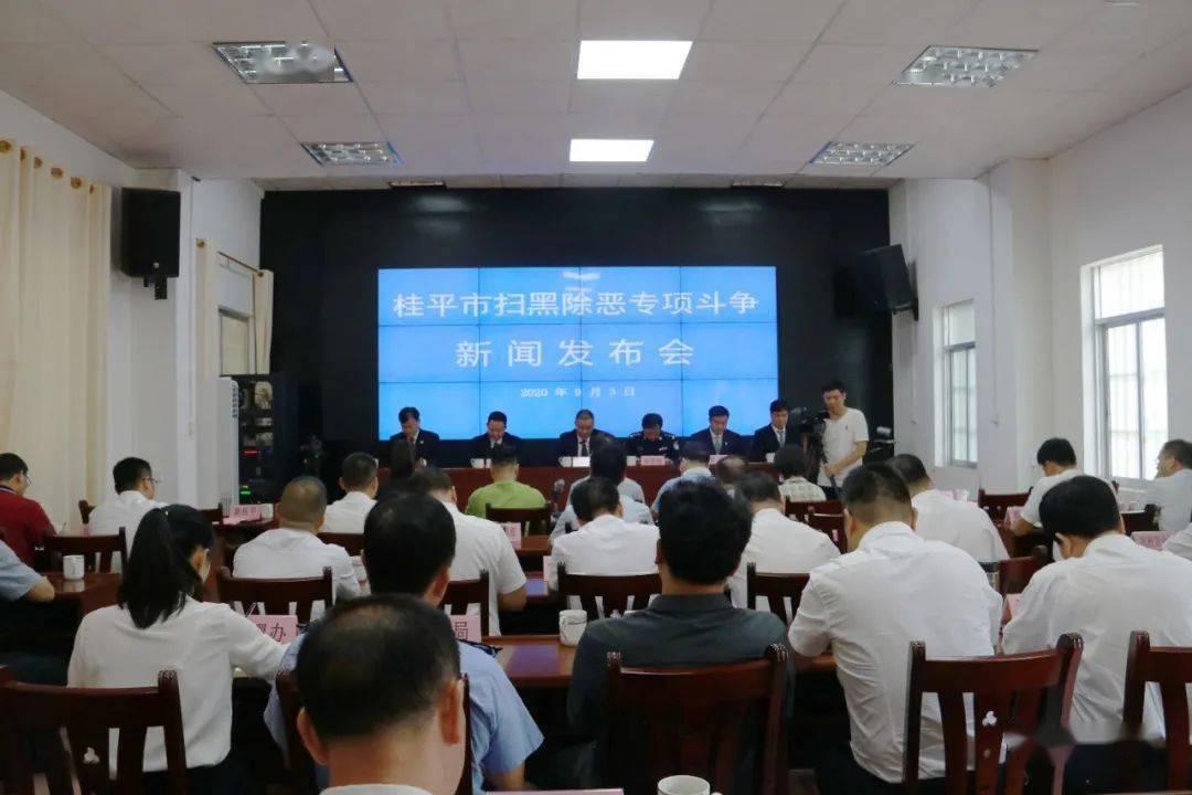 桂平市召开扫黑除恶专项斗争新闻