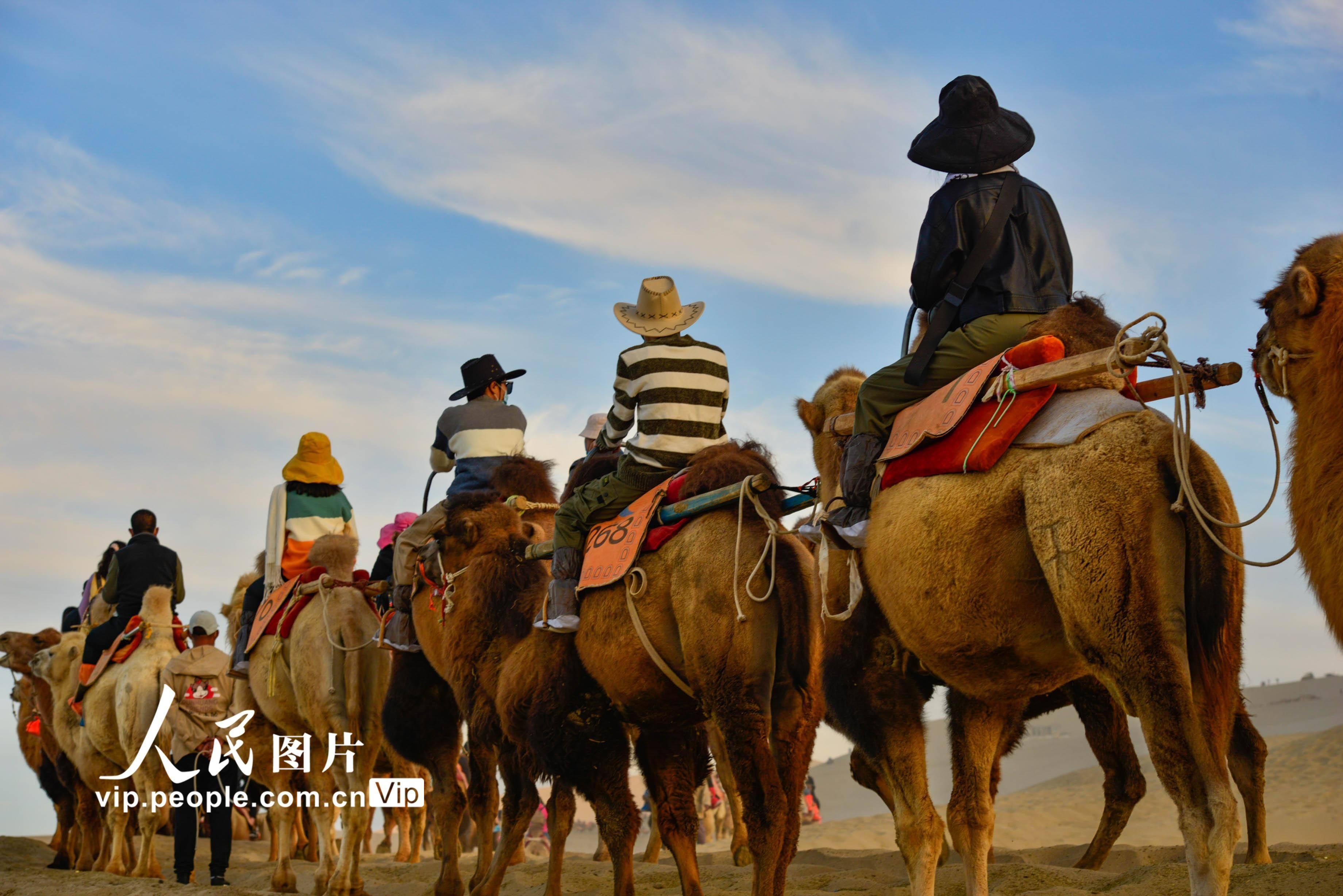 甘肃敦煌:骆驼铃在沙漠迎宾