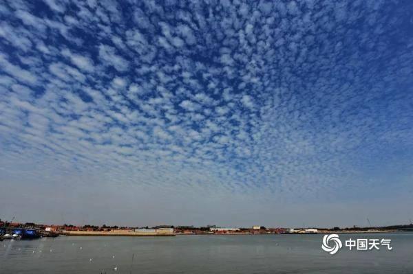天空中有一朵鱼做成的云