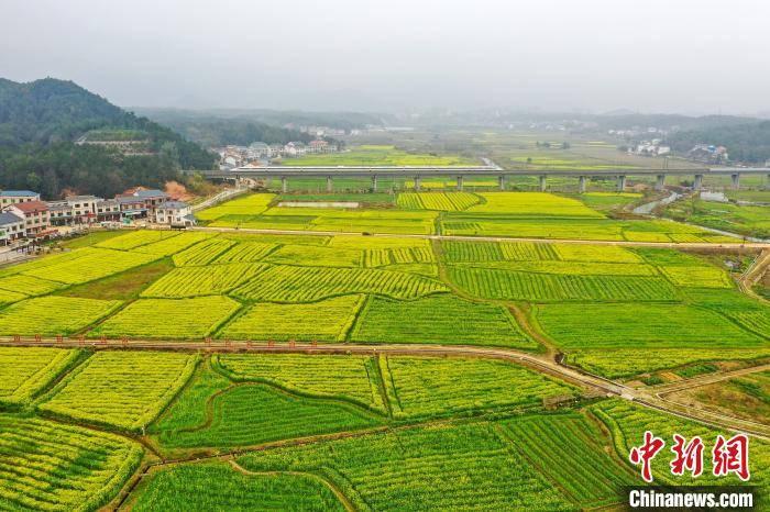 聚力体育频道直播:湖南省南岳区成立35年来 旅游收入增长了3000倍