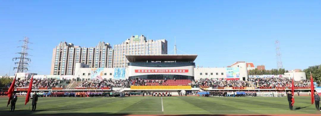 OD体育进入  多图!超燃!直击北京林业大学2020年秋季运动会现场(图1)