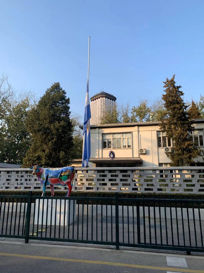 阿根廷驻华使馆哀悼马拉多纳:是他把蓝白条纹带到世界的每个角落